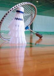 Badminton : 7ème cure de plumes