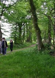 Balade découverte : À travers les parcs