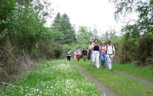 Randonnées pédestres accompagnées - Bagnoles-de-l'Orne