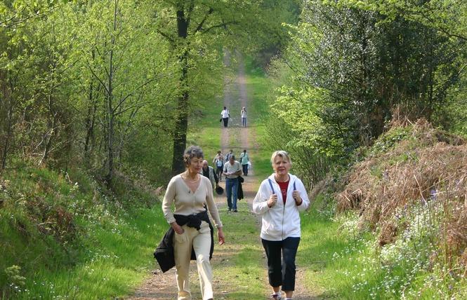 Randonnées pédestres accompagnées 2 - Bagnoles-de-l'Orne