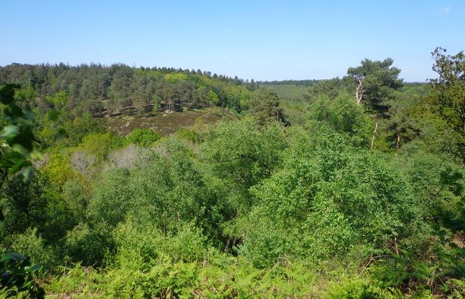 Gorges de Villiers 3 - Saint-Ouen-le-Brisoult