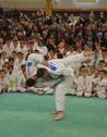 800 x 600 Judo