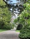 arboretum_Bagnoles_de_l'Orne_Normandie